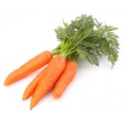Zanahoria Hoja(Manojo)