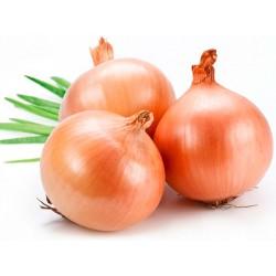 Cebolla. Mediana (Bolsa 1/2 kg)