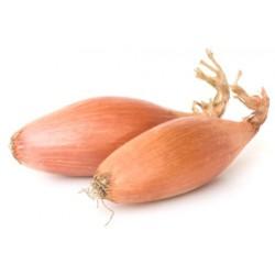 Cebolla Escalonia(Bolsa 250 gramos)