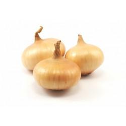 Cebolla Platillo(Bolsa 1/2 kg)