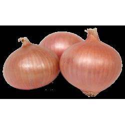 Cebolla Figueras (Bolsa 1/2 kg)