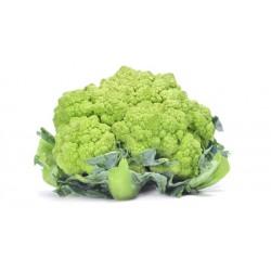 Brócoli Verde (Unidades)
