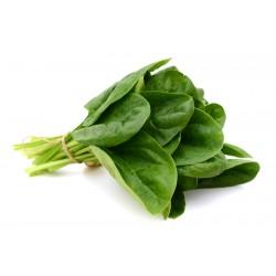 Espinacas (Manojo 1/2 kg.)