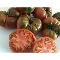 Tomate Raf(Bolsa 1/2 kg)